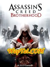 game assassin creed brotherhood